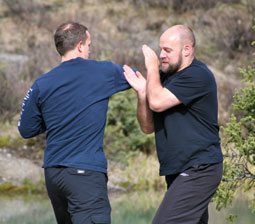 James Freeman and Iain Abernethy Bunkai Drill